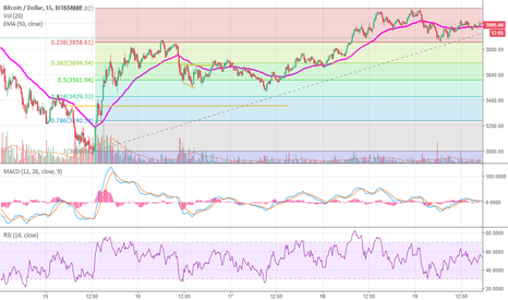 BTCUSD: Double bottom on the .236