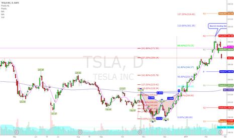 TSLA: $TSLA 246 DTS placed
