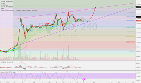 ETCUSD: ETCUSD 4h: Next step to 25 USD possible.