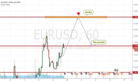 EURUSD: Euro Short position