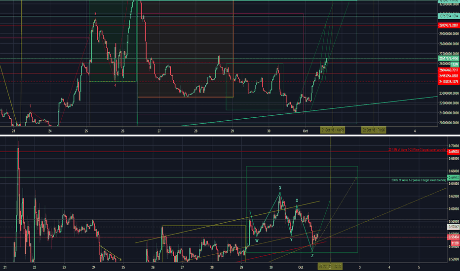 XRPUSDSHORTS: next wave up?