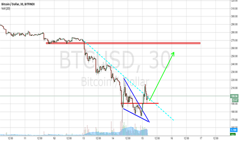 BTCUSD: Surprise!  Time for a rally!