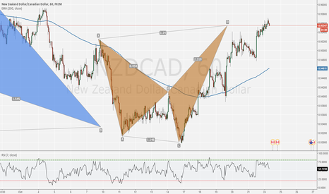 NZDCAD: Going short on the shark pattern now !