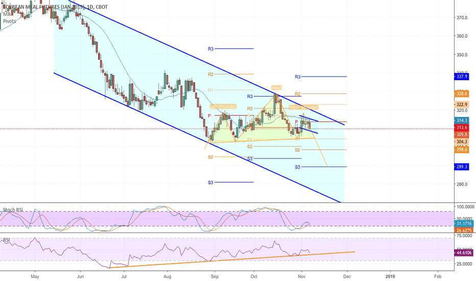 ZMF2019: January Soybean Meal Channel and Head and Shoulders