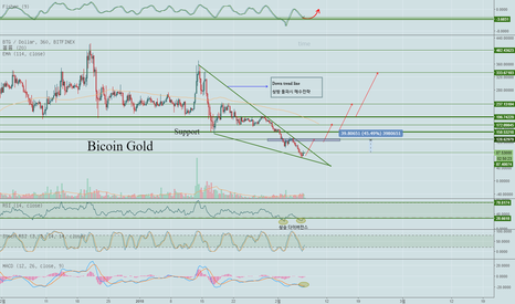 BTGUSD: BTG / USD (Bitcoin gold 하락추세선 돌파시 매수 전략)