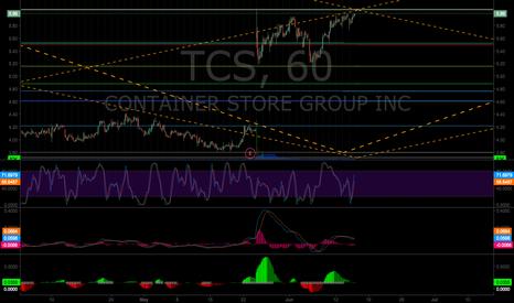 TCS: TCS Fib Model