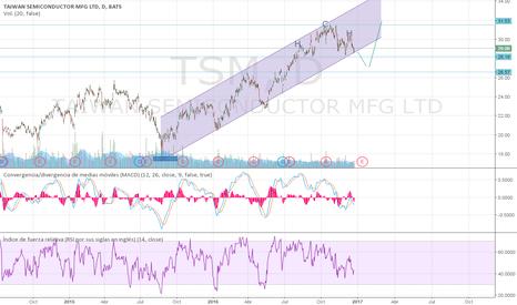 TSM: Esperar corrección para una nueva subida.