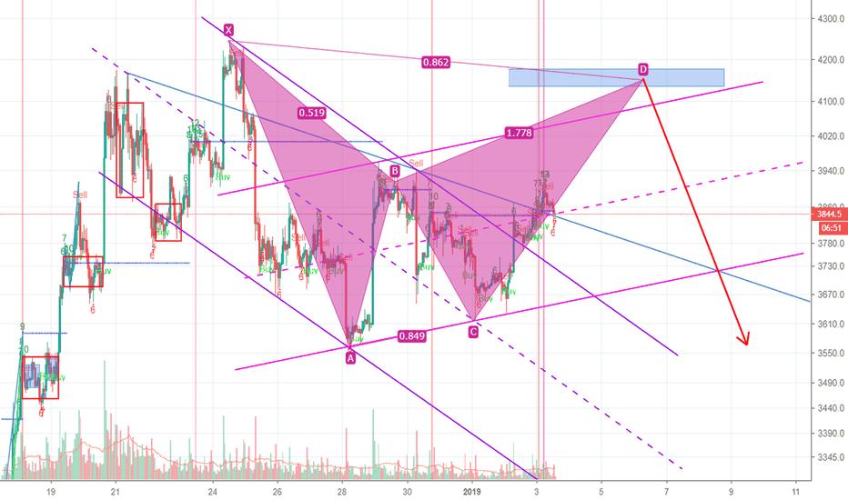 XBTUSD: BTC有望走出蝙蝠形态,短线看涨中线看跌