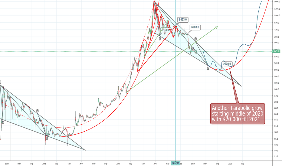 BTCUSD: btcusd Bitcoin Rally will buttom at 2000 in September 2019