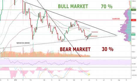 BTCUSD: BITCOIN: Bull Market or Bear Market? Next stop: 8,000 USD, then?