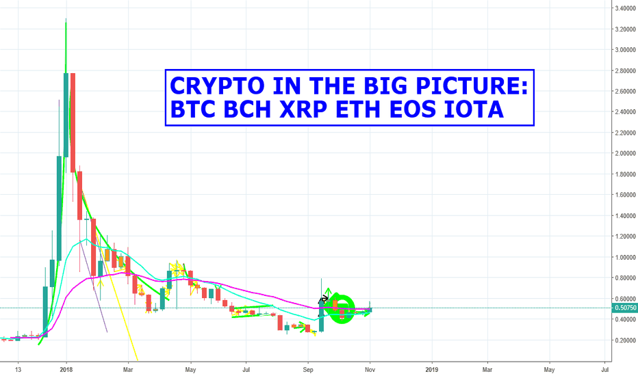 XRPUSD: Crypto In The Big Picture: BTC BCH XRP ETH EOS IOTA