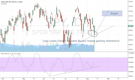 SPY: SPY ..Bulls may have grabbed back the momentum