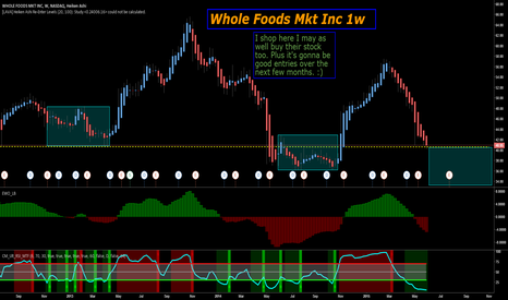 WFM: A worm whole to profits