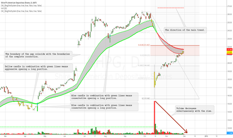 SHPG: We must wait for closing the gap, the end of the correction and