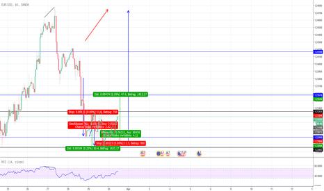 EURUSD: EURO/USD long