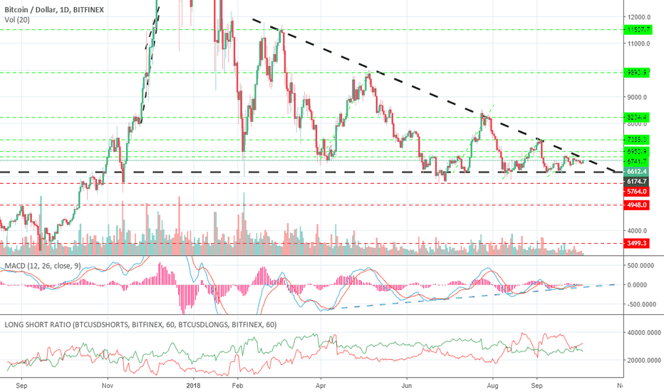 BTCUSD: Everything about Bitcoin (except what it will do!)