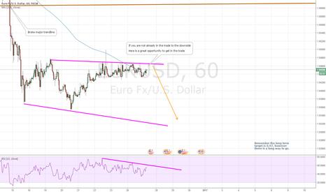 EURUSD: Further downside