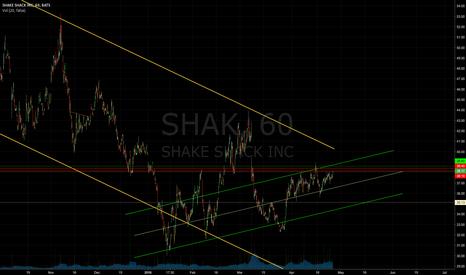 SHAK: Holding Up