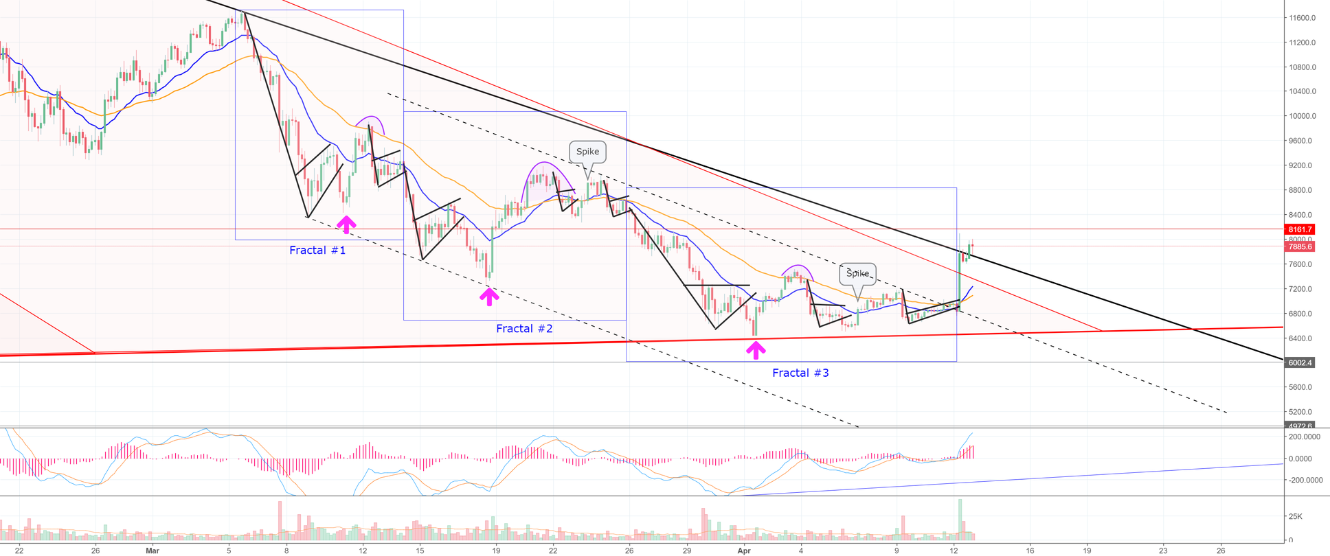 Bulls Get A Relief Rally in Bitcoin! I Don't Trust it. (BTC)