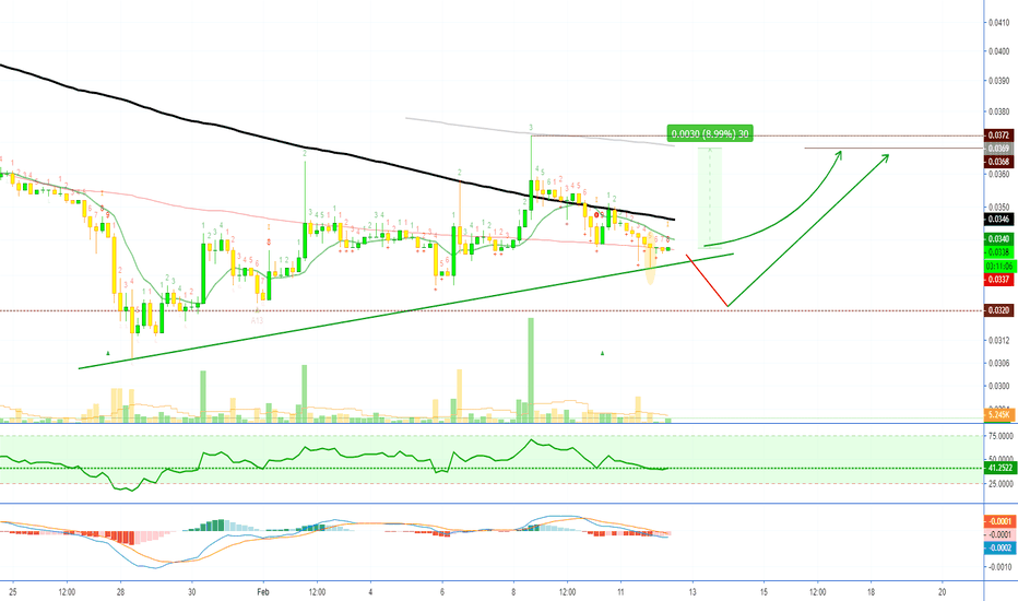 BCHH19: Bitcoin Cash (BCHH19) 88%+ ROE Possible on 10X Leverage