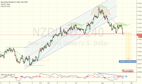NZDUSD: Are you prepared ?