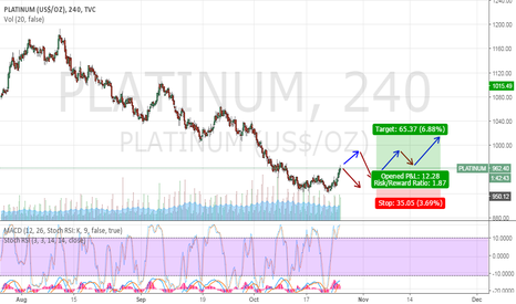 PLATINUM: PLATINUM is now ready to take the rocket