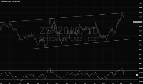ZSK2018: Soybeans Calling