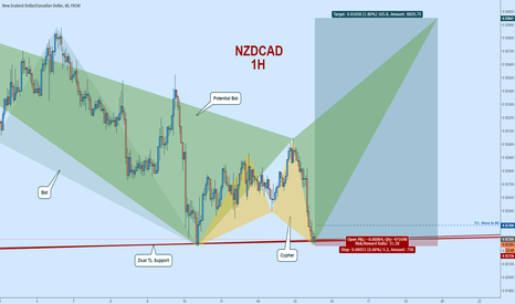 NZDCAD: NZDCAD Long:  Classic Choppy Price Action