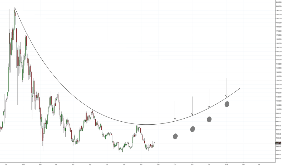 BTCUSD: BTC Long Position 1st January 2019