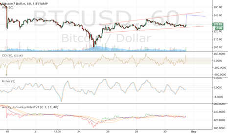 BTCUSD: Something like this?