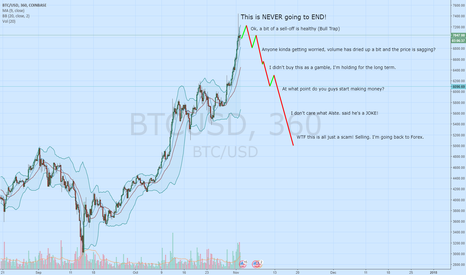BTCUSD: In a not so distant future...