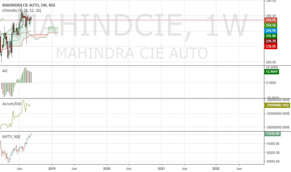 MAHINDCIE: Buy Mahindra CIE for long term. The stock is buy on dips.