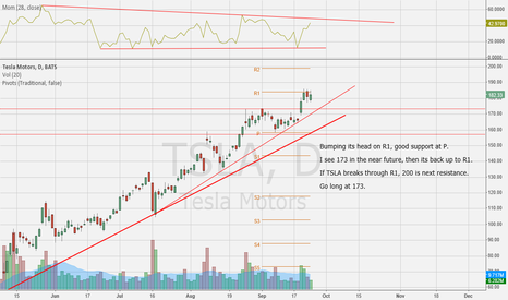 TSLA: watching the pivots