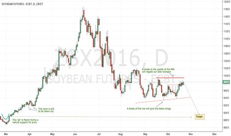 ZSX2016: CBoT soybeans still a sort play