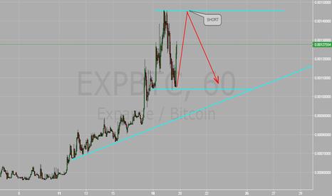EXPBTC: EXP/BTC