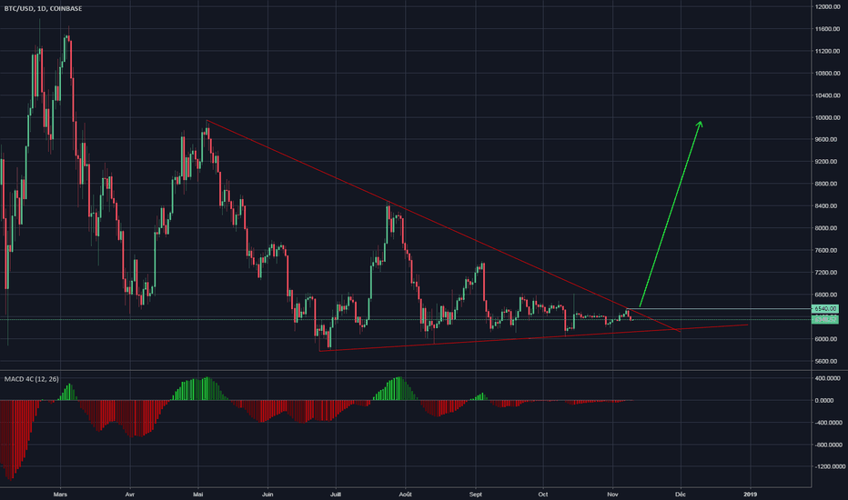 BTCUSD: BTC/USD Daily - Fort emballement haussier à venir