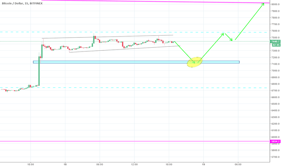 BTCUSD: HCH o Raising Wedge.